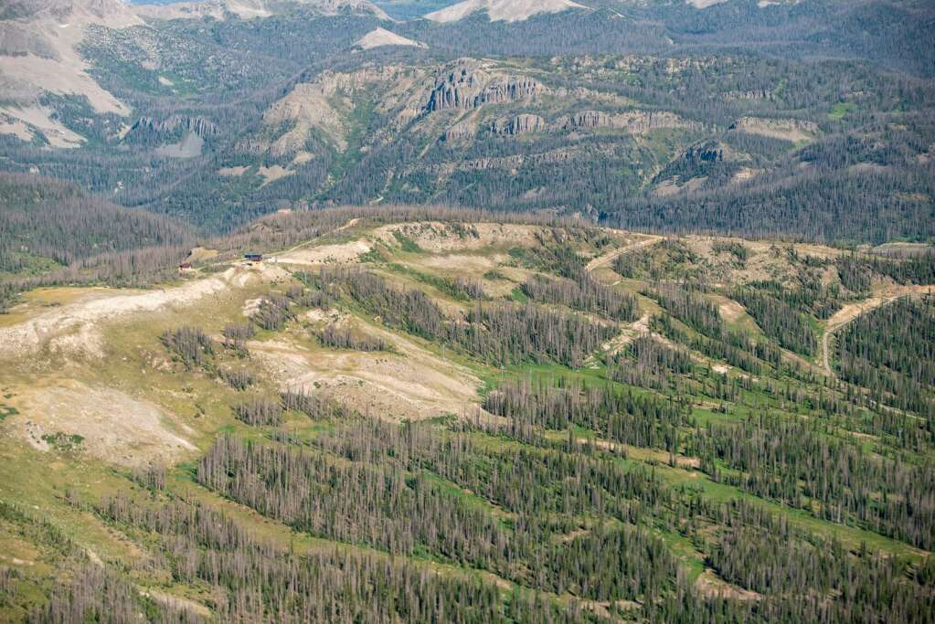 An aerial image of Wolf Creek Pass taken during the 2020 USFS survey of forest health shows the damage from the spruce beetle infestation in the area. | Courtesy US Forest Service