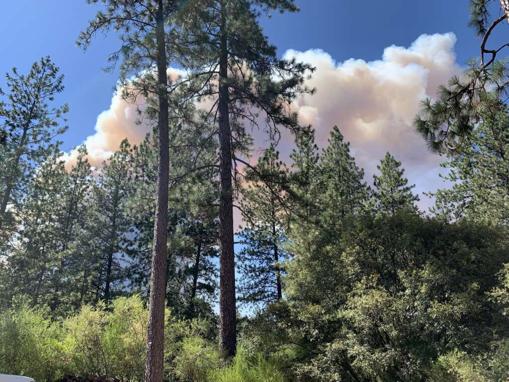 The River Fire started in the area of the Bear River Campground Wednesday around 2 p.m.   Samantha Sullivan\ssullivan@theunion.com