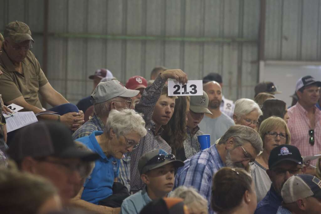 Members of the audience bid on animals at the Moffat County Fair livestock auction Saturday evening. | Cuyler Meade / Craig Press