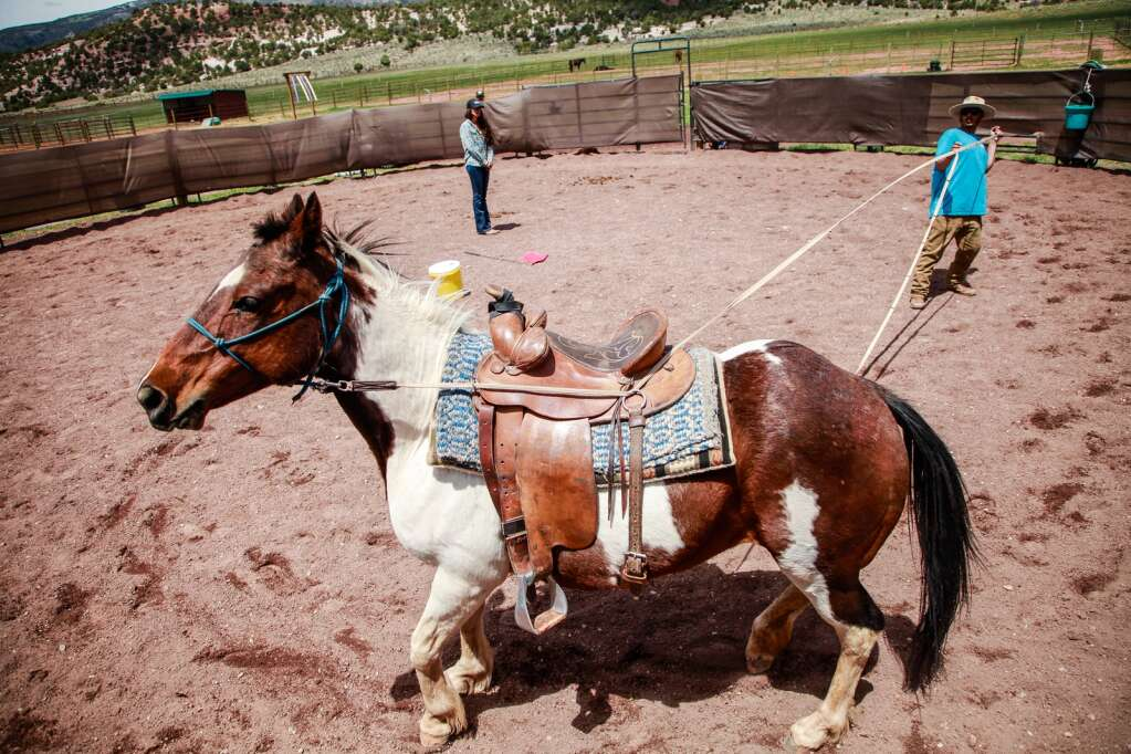 Joel Aguilar trains a horse by ground driving May 2020. The technique uses pressure on the ropes to show commands.