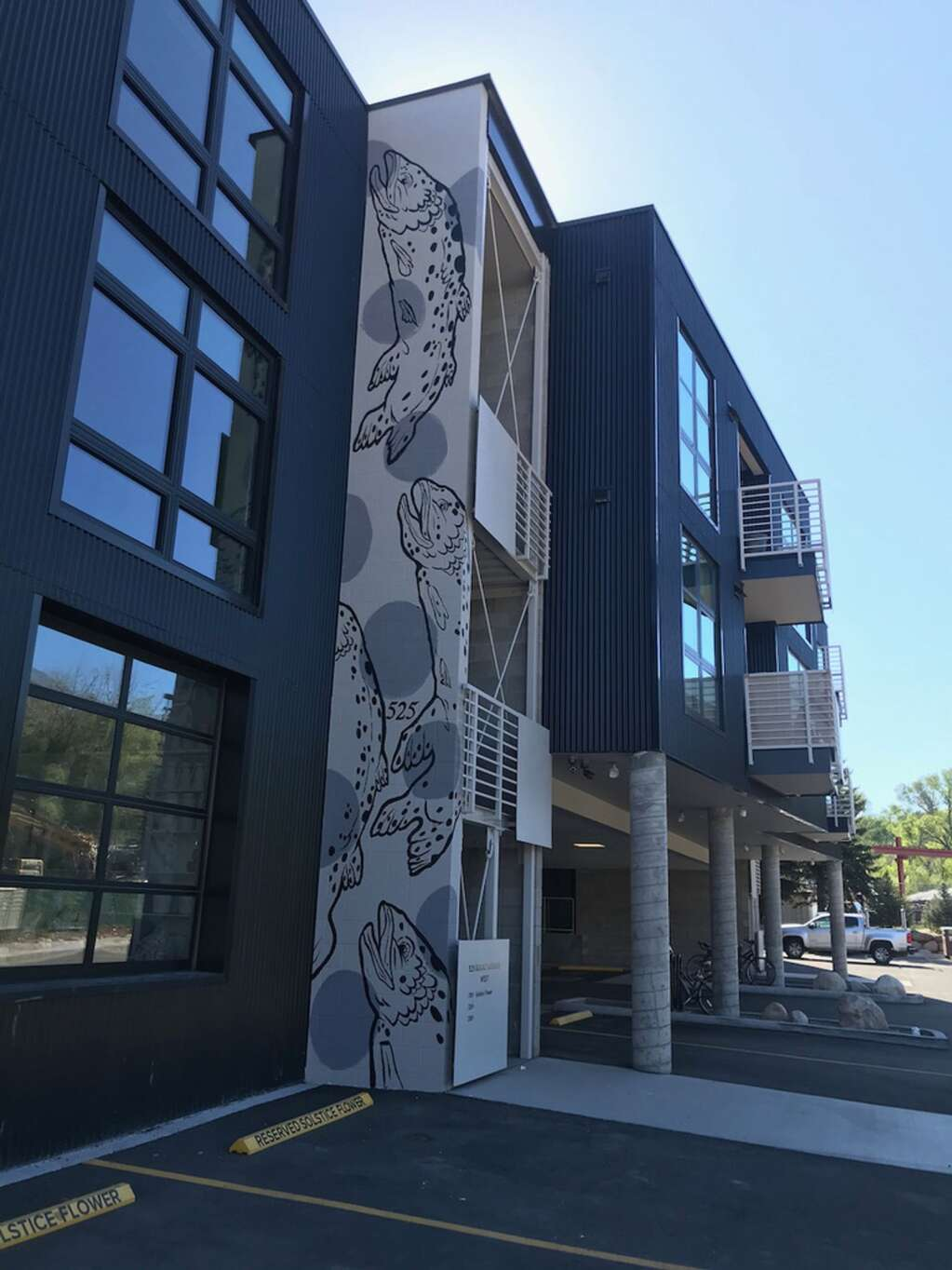 Teal Wilson completed this mural at 525 Basalt Ave.   Courtesy photo