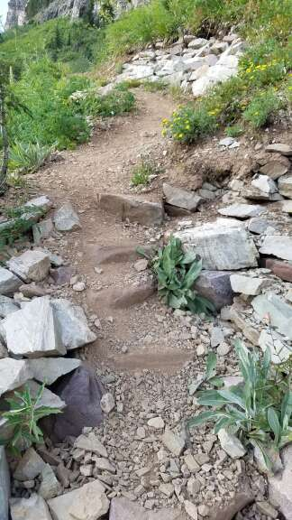 CFI staff and volunteers will continue work on this large staircase on North Maroon Peak this summer. It is a joint project with Roaring Fork Outdoor Volunteers. | CFI\courtesy photo
