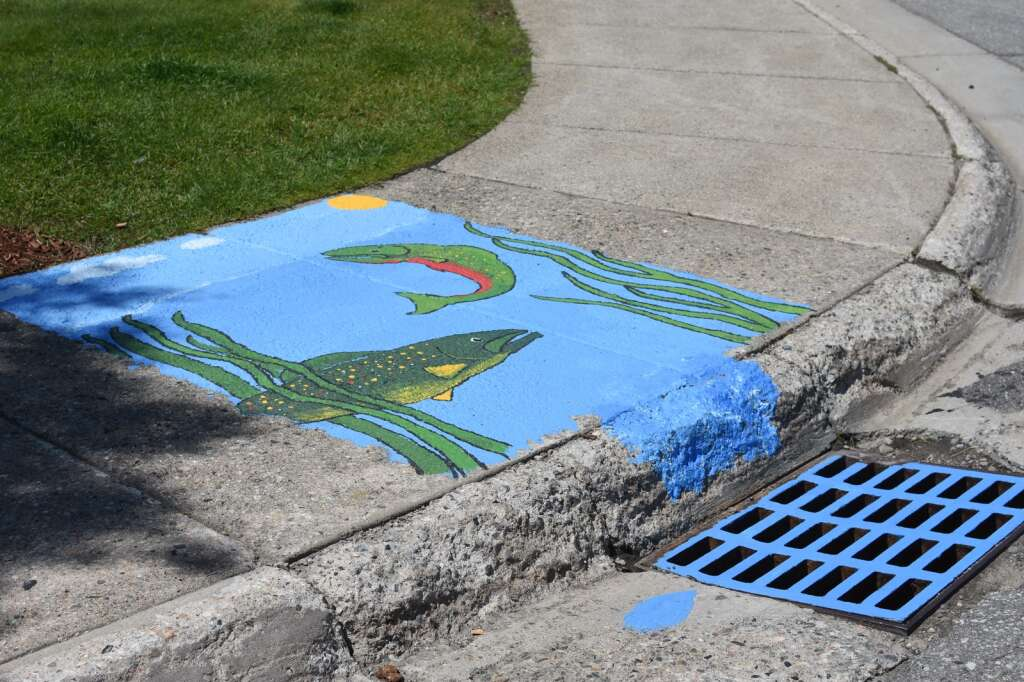 A storm drain mural painted by Jessica Marie Johnson is pictured Thursday, July 22, in Silverthorne. | Photo by Lindsey Toomer / ltoomer@summitdaily.com
