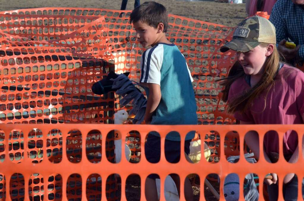 Camron Villarreal, left, joins Khloe Walton, right, both of Hayden, to sort ducks Saturday at the Routt County Fair. (Photo by Bryce Martin)