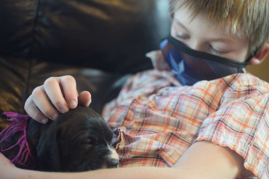 Ethan Knight, 10, holds Lily at his home in Frisco on Thursday, March 11. Lily is the first of the three foster puppies he rescued with CPR on Valentine's Day. | Photo by Jefferson Geiger / jgeiger@summitdaily.com