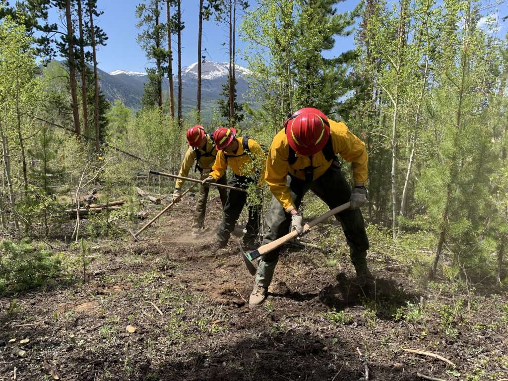 Firefighters move in a line to clear vegetation and dig down to mineral soil while creating a fire line on Tuesday, June 8, near County Commons. | Photo by Sawyer D'Argonne / sdargonne@summitdaily.com