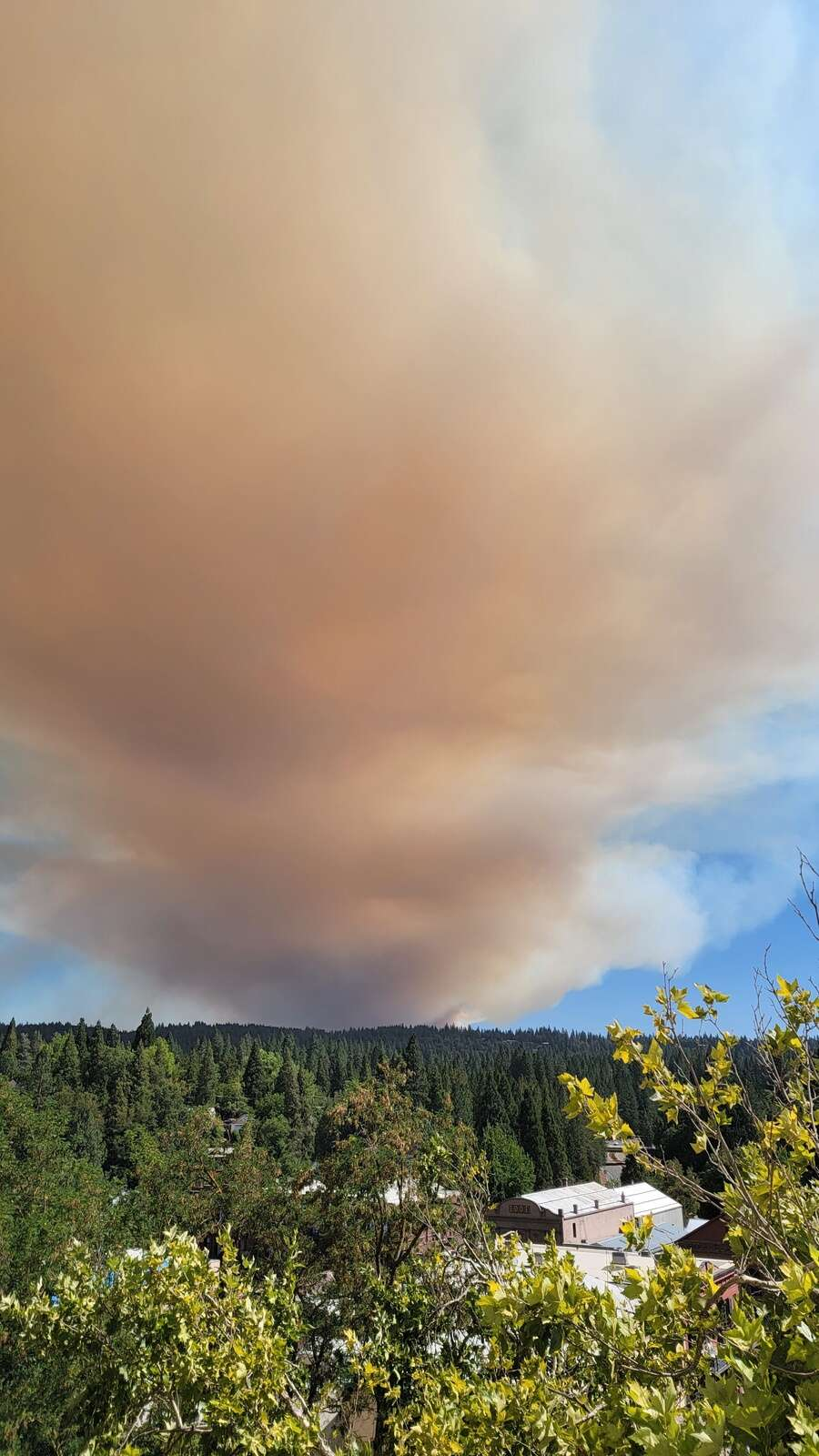 View of the Bear River Campground fire from Nevada County Superior Court at 3:55 p.m. August 4.   Submitted by Gaylord Spurgeon