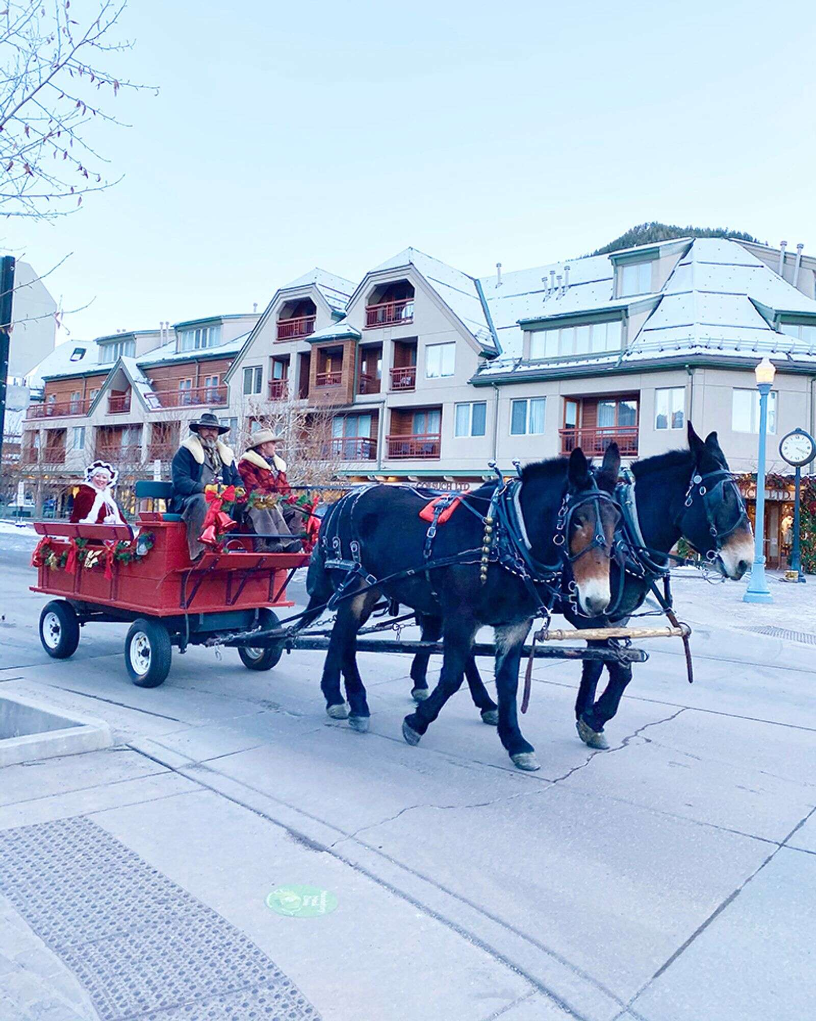 Santa and Mrs. Claus on a carriage ride around town.