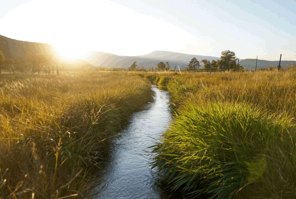 An irrigation ditch flows through the Coffman Ranch about 1.5 miles east of Carbondale. | AVLT/courtesy photo