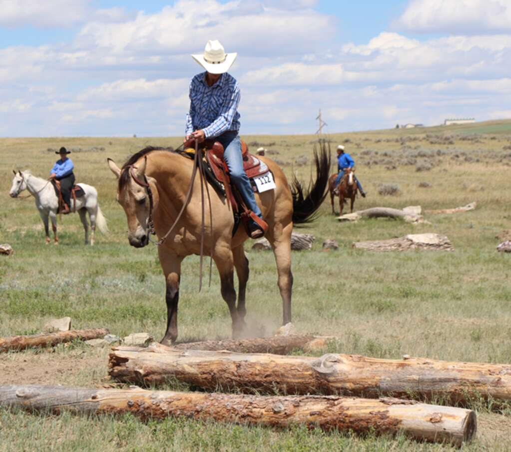 The outdoor trail challenge at Kluz Performance Horses. Last year, the Kluzs hosted a trail challenge contest on it.