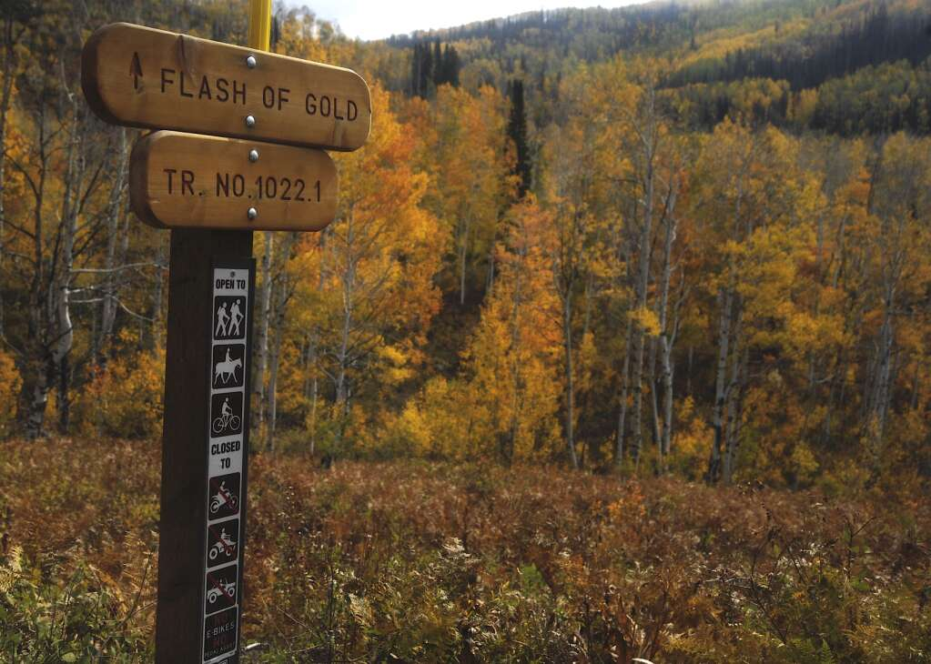 Flash of Gold on Buffalo Pass is always a busy location for fall recreation. | Shelby Reardon/Steamboat Pilot & Today