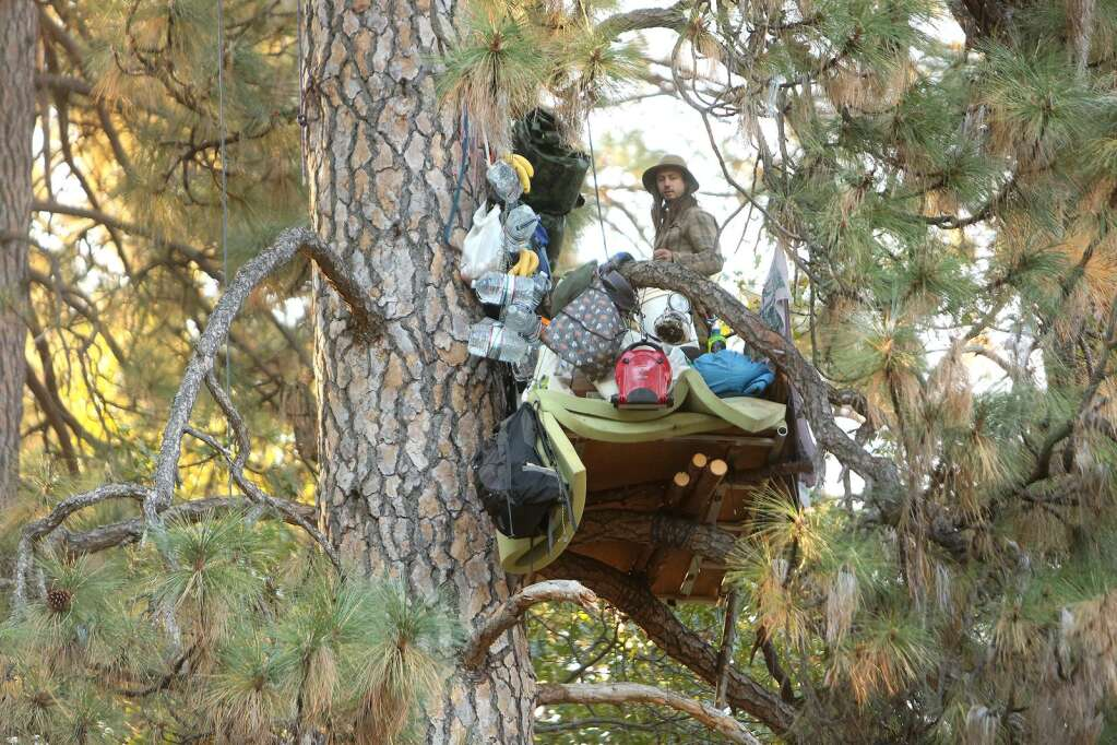 A tree sitter referred to as Tarzan, peacefully protests PG&E's decision to cut this tree and others in Nevada City's Pioneer Cemetery Oct. 30 as police and PG&E workers gather below. | Photo: Elias Funez