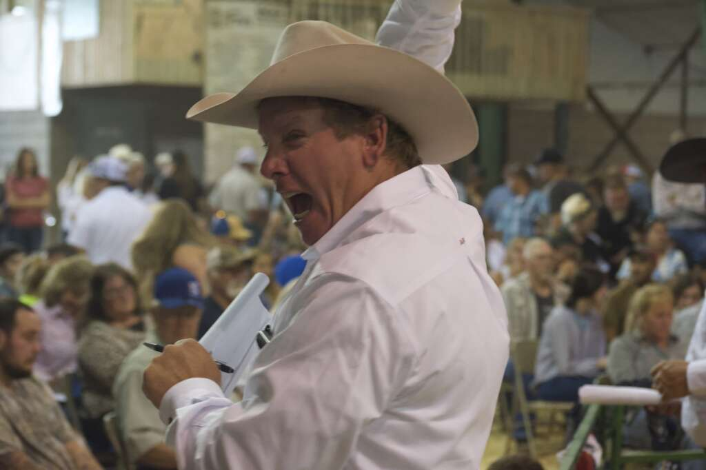 Auctioneer's assistants shout back bids to teh auctioneer at the Moffat County Fair livestock auction Saturday evening. | Cuyler Meade / Craig Press