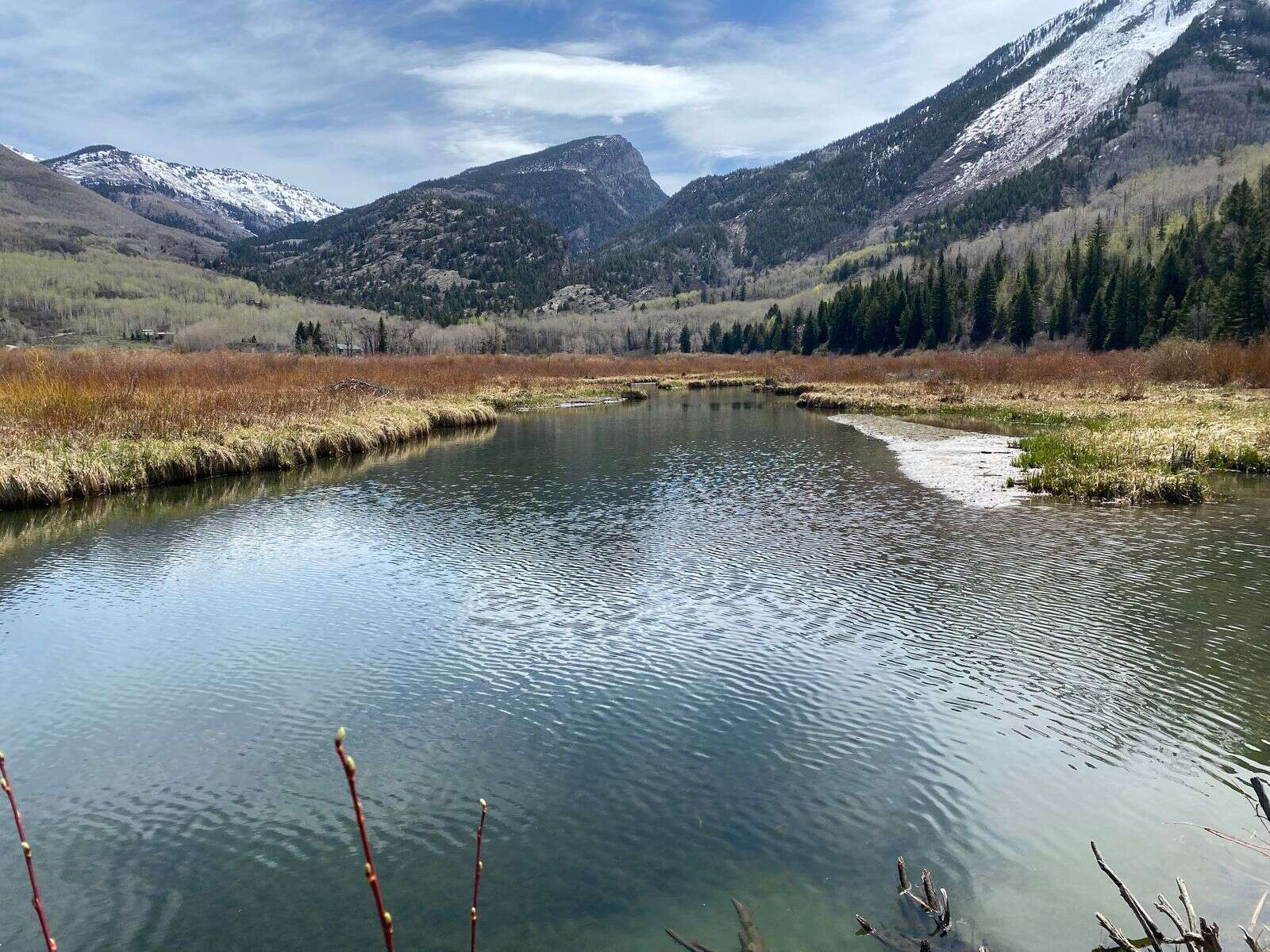 The Crystal River near the town of Marble forms a wetland area. A Pitkin County group wants to designate this section of the Crystal as Wild & Scenic.   Curtis Wackerle/Aspen Journalism