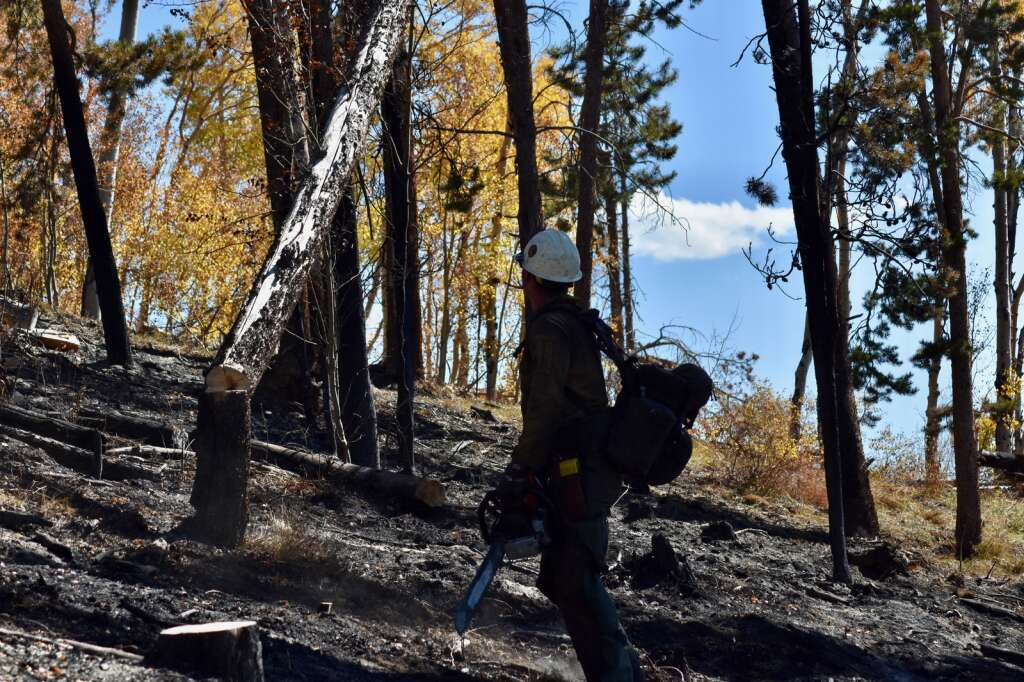 A firefighter uses a chain saw to cut through a tree inside the Ptarmigan Fire burn scar Monday, Oct. 4. | Sawyer D'Argonne/Summit Daily News