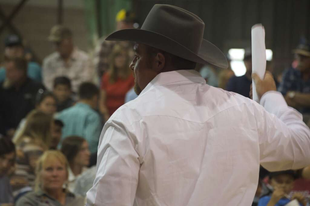 Auctioneer's assistants shot back new bids to the auctioneer at the Moffat County Fair livestock auction Saturday evening. | Cuyler Meade / Craig Press