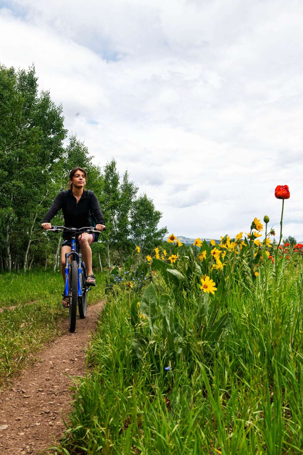 Emily Couture rides her bike through flowery fields of Marolt Open Space in Aspen on Friday, June 25, 2021. (Kelsey Brunner/The Aspen Times)