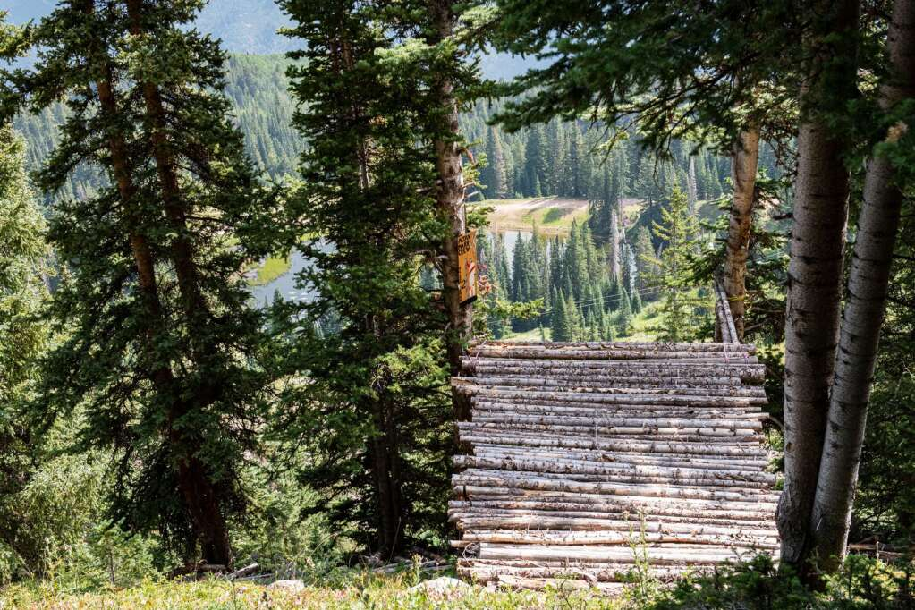 """A jump named """"Blair Witch #2"""" was hung by the Ajax Park Crew in the side country area off of Aspen Mountain where the Pandora expansion is proposed to be on Thursday, August 12, 2021. (Kelsey Brunner/The Aspen Times)"""
