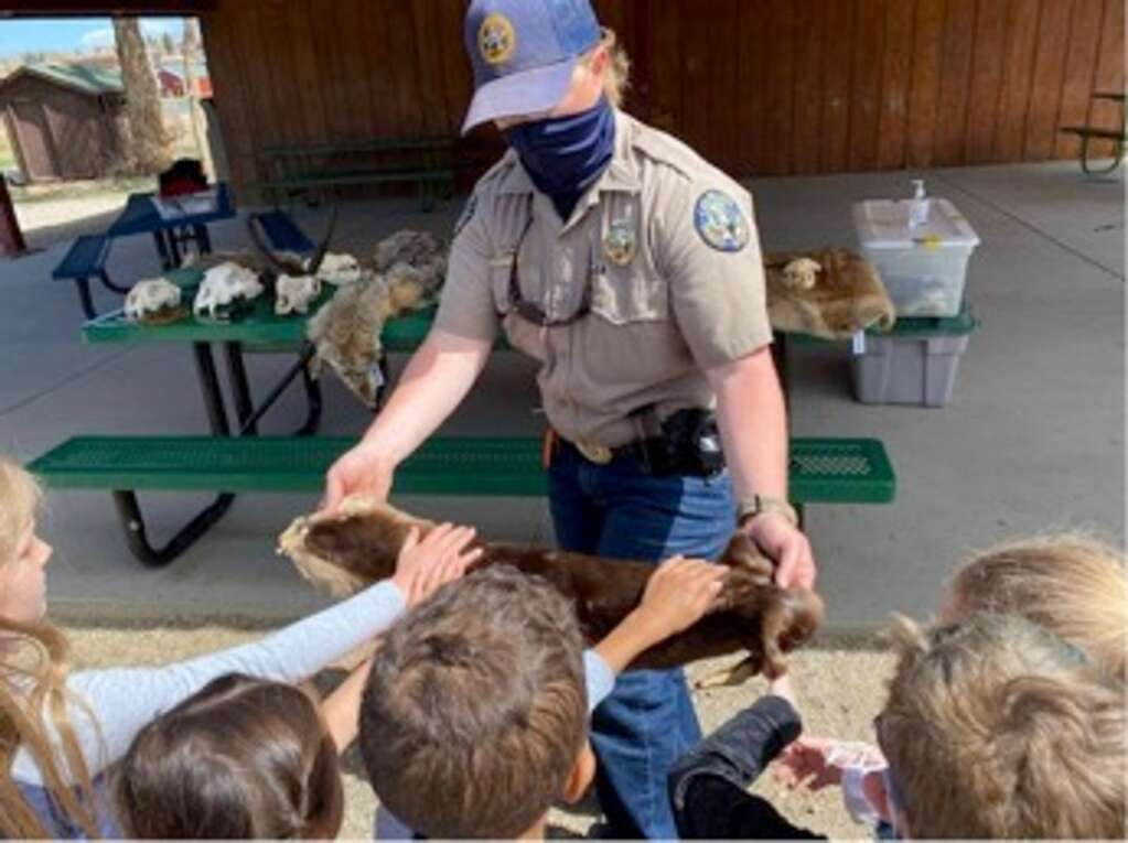Kindergartners check out the pelts and bones brought by Colorado Parks and Wildlife during a field trip to Kaibab Park.