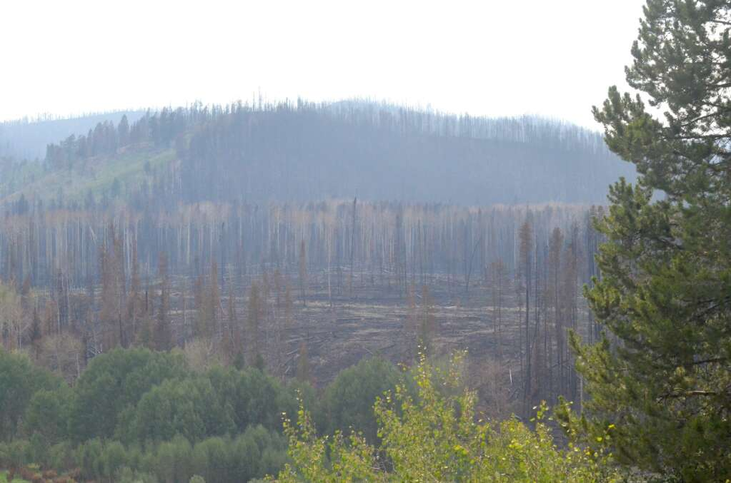 The Muddy Slide Fire burn scar as seen from Routt County Road 16. (Photo by Dylan Anderson)