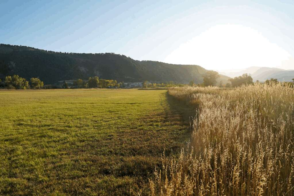 Agricultural uses will be preserved on the Coffman Ranch after AVLT completes the purchase. | AVLT/courtesy photo