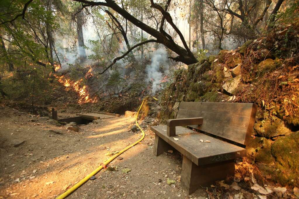 Flames from the Jones Fire burn near a bench along the Independence Trail Aug 19. | Photo: Elias Funez