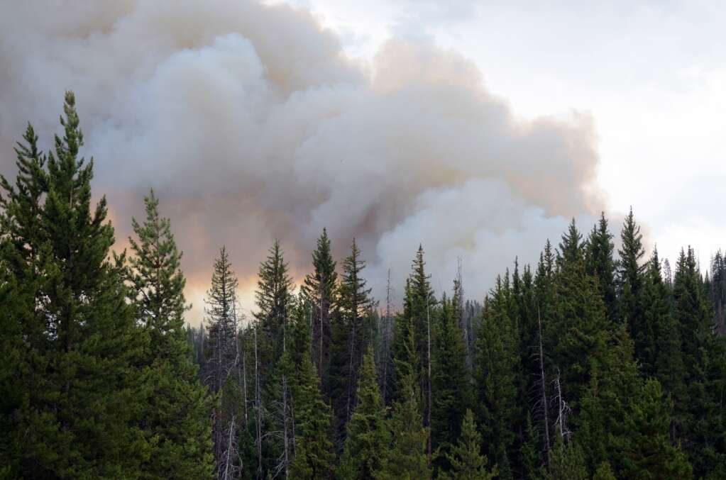 The Morgan Creek Fire started Friday, July 9, in the area of Hinman Lake off Seedhouse Road in North Routt County. (Photo by Bryce Martin)