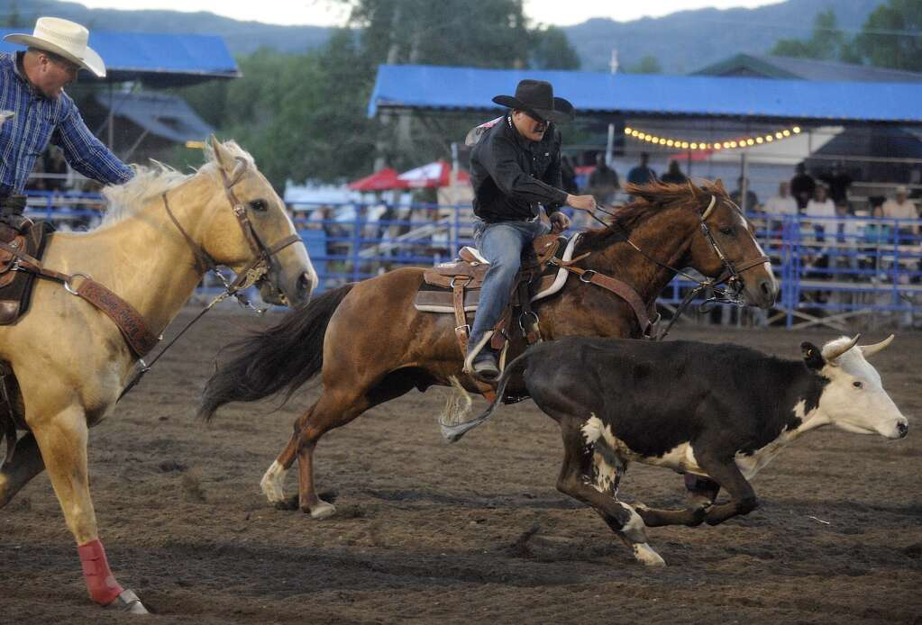 Yampa's Jace Logan eyes his steer before wrestling it to the ground at Friday night's Steamboat Springs Pro Rodeo series. (Photo by Shelby Reardon)