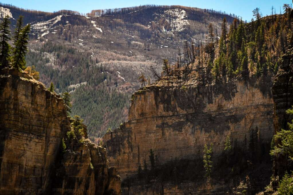 Trees and steep cliffs sit charred above the Hanging Lake Trail after last summer's Grizzly Creek Fire swept through Glenwood Canyon. |Chelsea Self / Post Independent