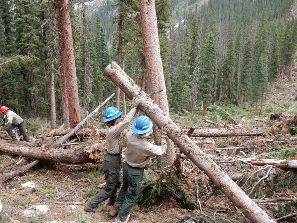 A White River National Forest trails crews clears timber in August 2019 that fell in an avalanche the prior winter. The forest faces challenges maintaining the size of the seasonal crew.   Scott Condon/Aspen Times file