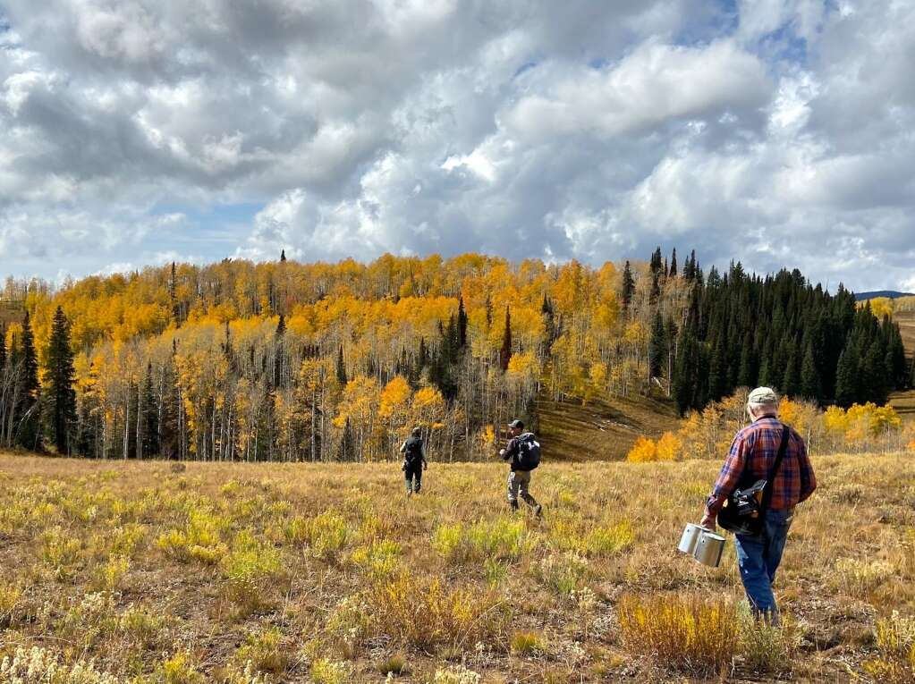 Walking to the introduction site at East Fork Deadhorse Creek. | Amy Titterington/White River National Forest