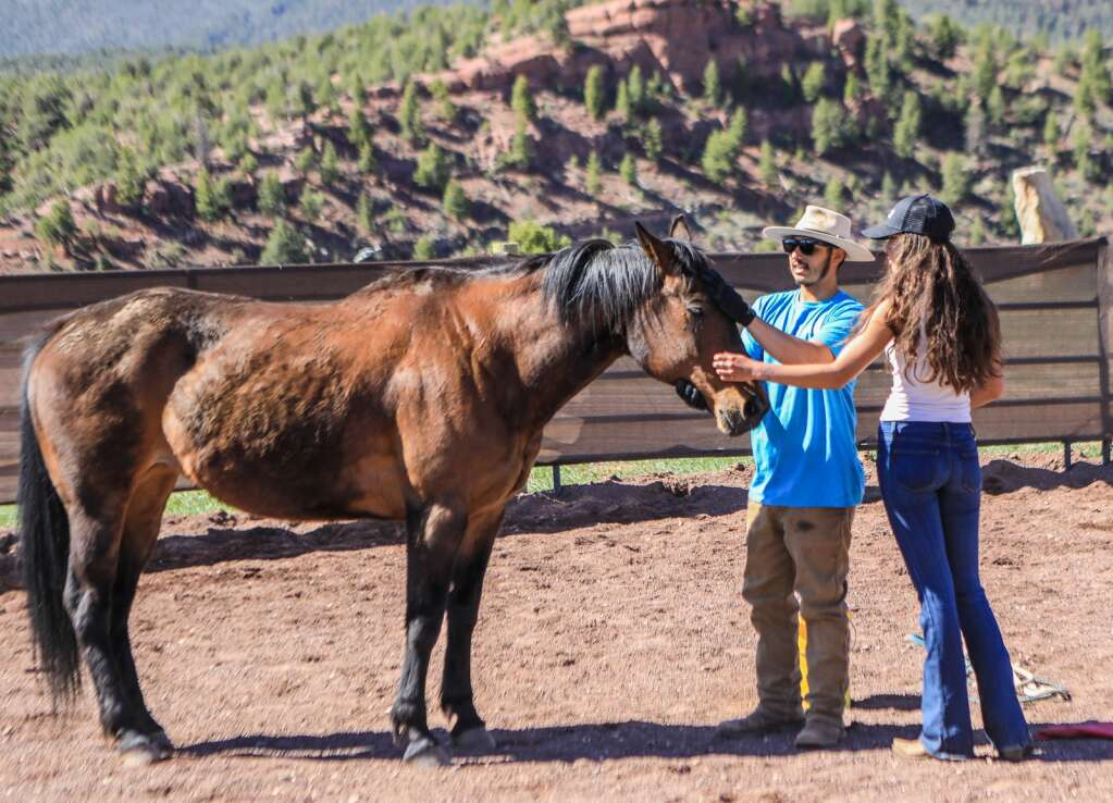 Joel Aguilar and Corey Taylor give love to a horse in training May 2020.