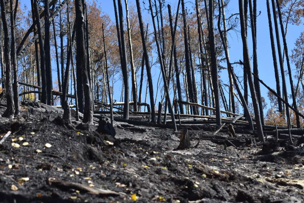 The Ptarmigan Fire's burn scar is pictured Monday, Oct. 4. | Sawyer D'Argonne/Summit Daily News