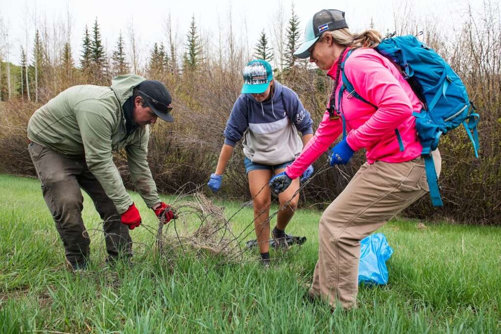 Brandon Hawksley, left, Jessica Coxon, and Caroline Heivly pull partially buried barbed wire out from the side of Owl Creek Road during the annual Snowmass Village Town Clean Up Day on Friday, May 21, 2021. Coxon's mother, Rhonda Coxon, organizes the event so Coxon explained that she's been a part of the event for nearly 20 years. (Kelsey Brunner/The Snowmass Sun)