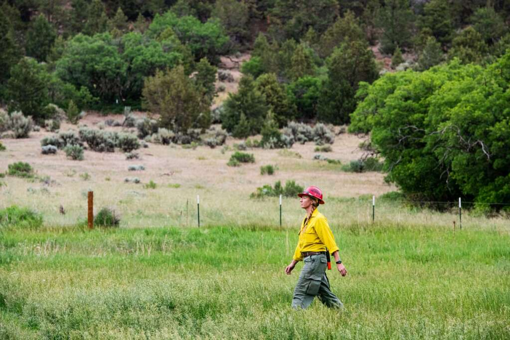 A wildland firefighter walks through tall grass next to Lower River Road below a fire that broke out on the evening of Friday, June 18, 2021. (Kelsey Brunner/The Aspen Times)