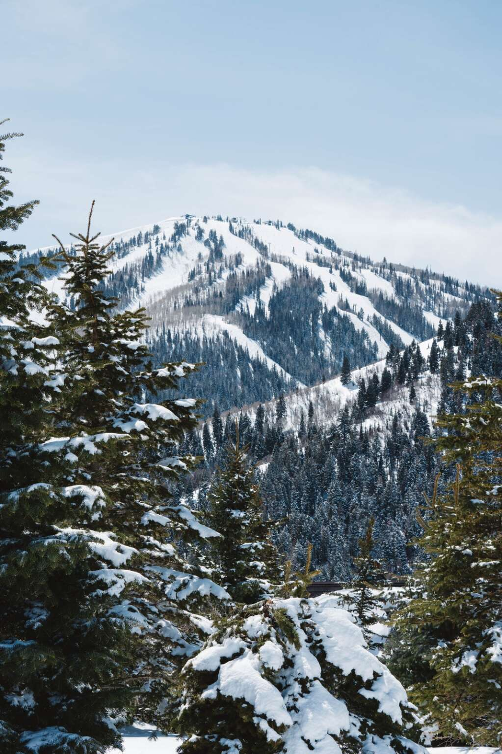 PCMR and Deer Valley, reliant on good snow, outline their sustainability efforts