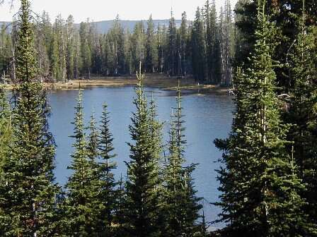The popular Crystal Lake trailhead, which is often filled beyond capacity, is set for renovations this summer. | Courtesy of the U.S. Forest Service