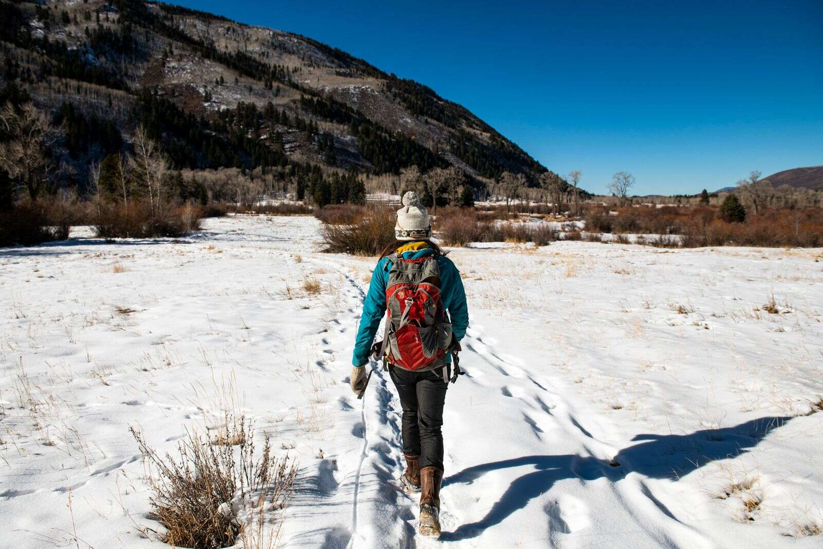 Pitkin County Open Space & Trails' Liza Mitchell walks through Northstar Nature Preserve to scout a place to put wildlife camera to monitor beaver dam activity in Aspen on Friday, Dec. 4, 2020. (Kelsey Brunner/The Aspen Times)