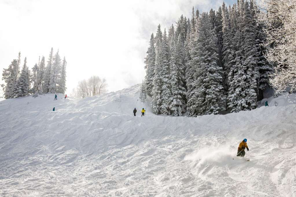 Skiers make their way down a powder run on Aspen Mountain after an accumulation of 14-inches of snow on Thursday, Feb. 4, 2021. (Kelsey Brunner/The Aspen Times)