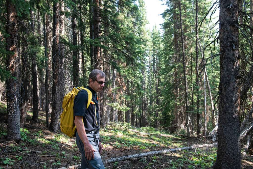 Rick Burkley stands in a heavily wooded section of Aspen Mountain where Pandora's expansion is proposed on Thursday, August 12, 2021. (Kelsey Brunner/The Aspen Times)