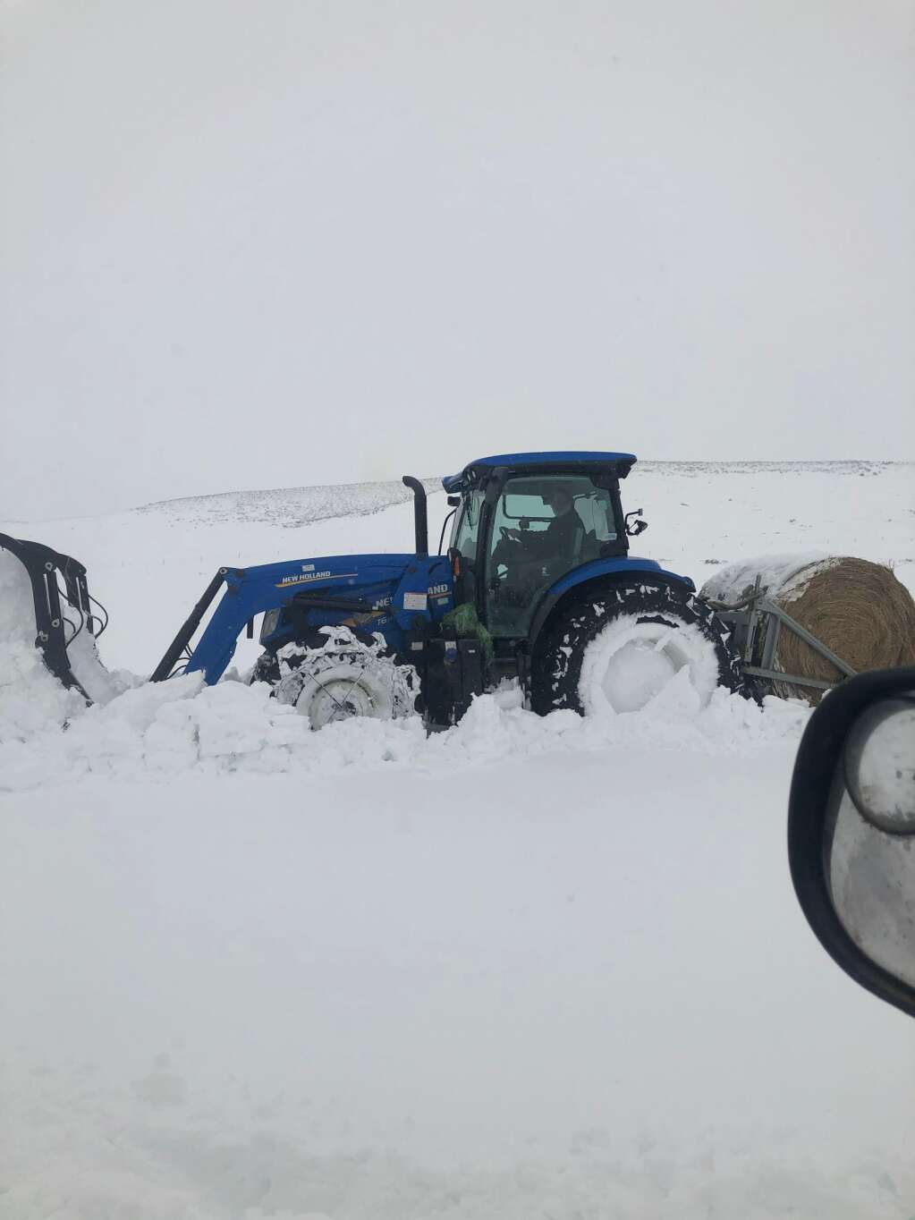 More than three feet of snow has made for a very long week as ranchers struggle to feed and provide a dry place for stock. | Kelli Hutchings; Wheatland; Wyoming.