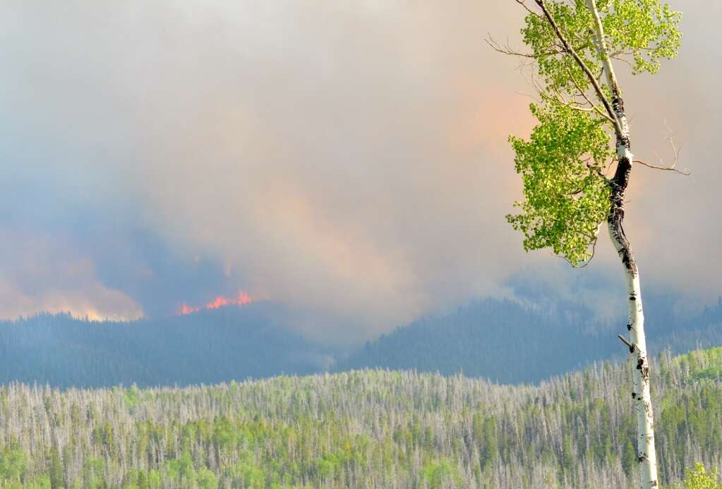 The Muddy Slide Fire was spotting and crowning as it grew significantly the afternoon of June 22. Here the flames can be visible from Routt County Road 16. (Photo by Dylan Anderson)