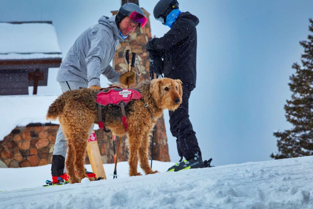 Skier Marcus Blue pets avalanche rescue dog Zoot at Aspen Mountain on March 24, 2021. | Scott Brockmeier/Courtesy photo