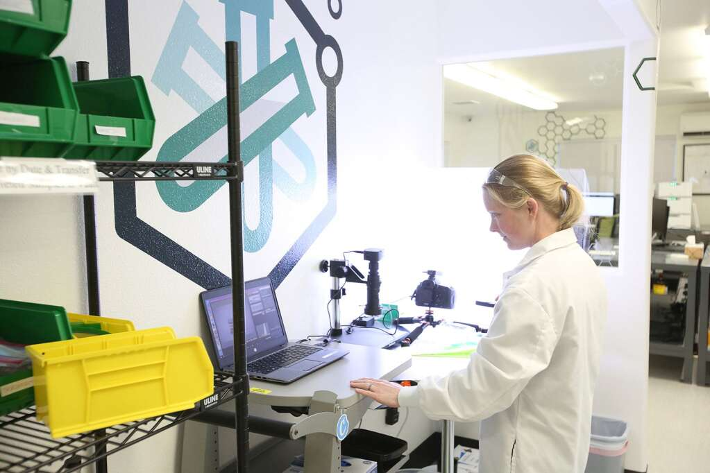 All incoming product to be tested is photographed and labeled upon intake at the cannabis testing lab THC Analytical Lab, which opened in Nevada city in February.   Photo: Elias Funez
