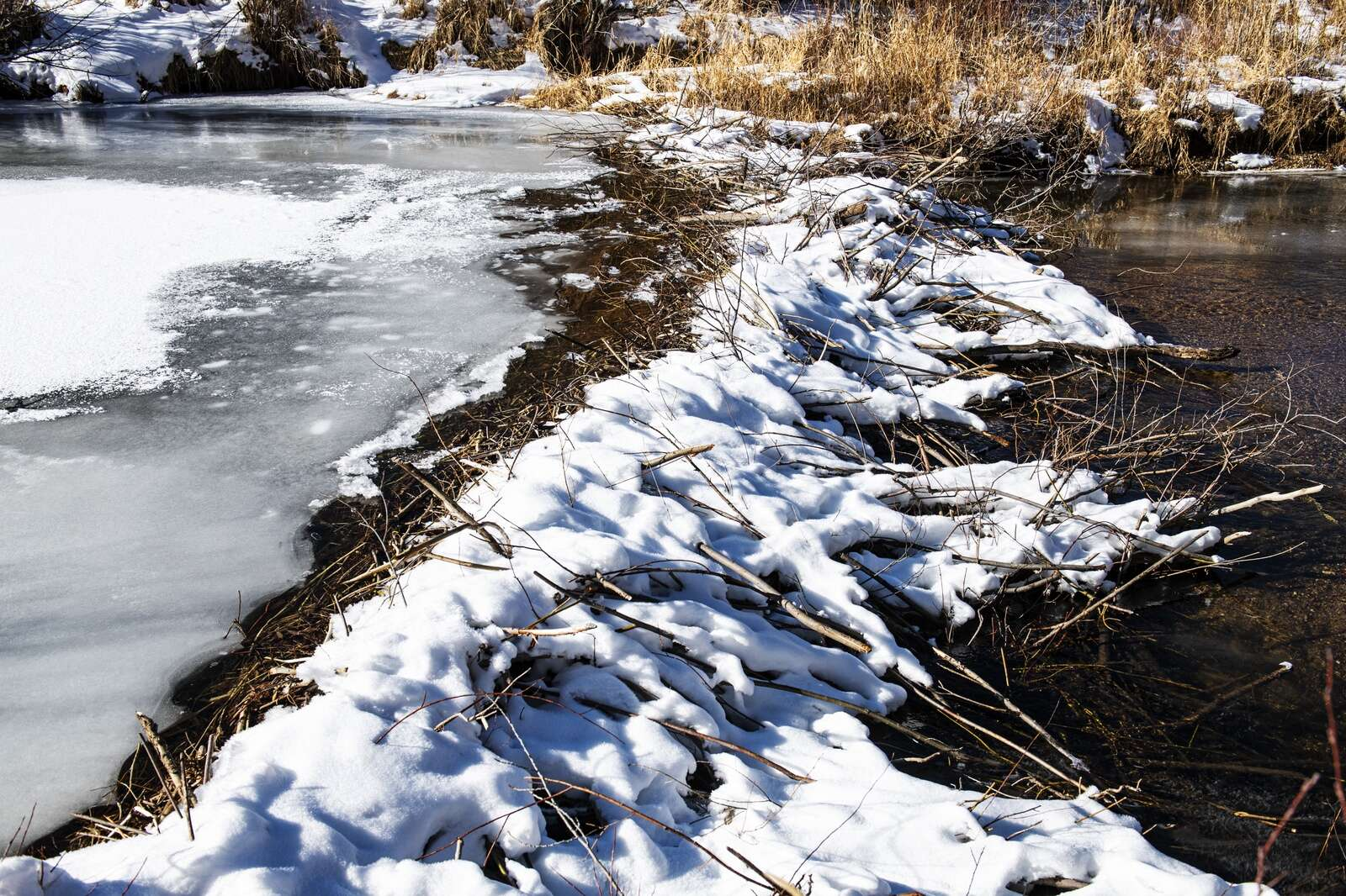 Water flows downstream from a dam, as it is frozen above the dam in the Roaring Fork River in Northstar Nature Preserve on Friday, Dec. 4, 2020. The dam is believed to have been built sometime this fall. (Kelsey Brunner/The Aspen Times)