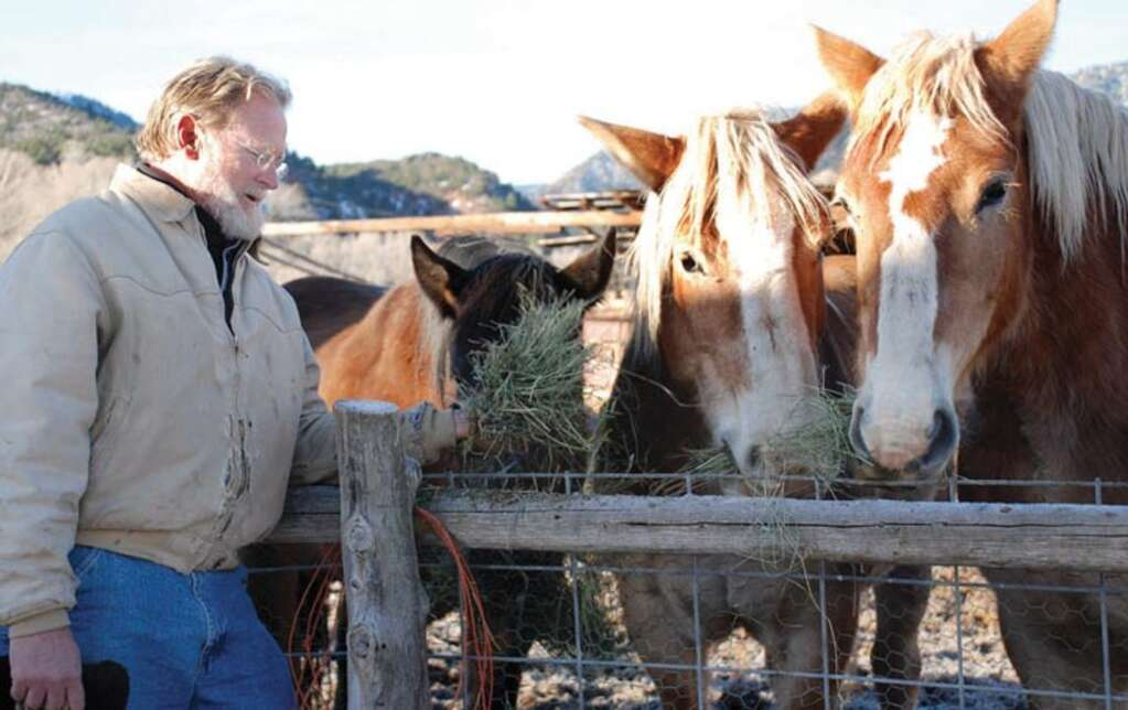 Brook LeVan with horses at Sustainable Settings near Carbondale. Aspen Times file