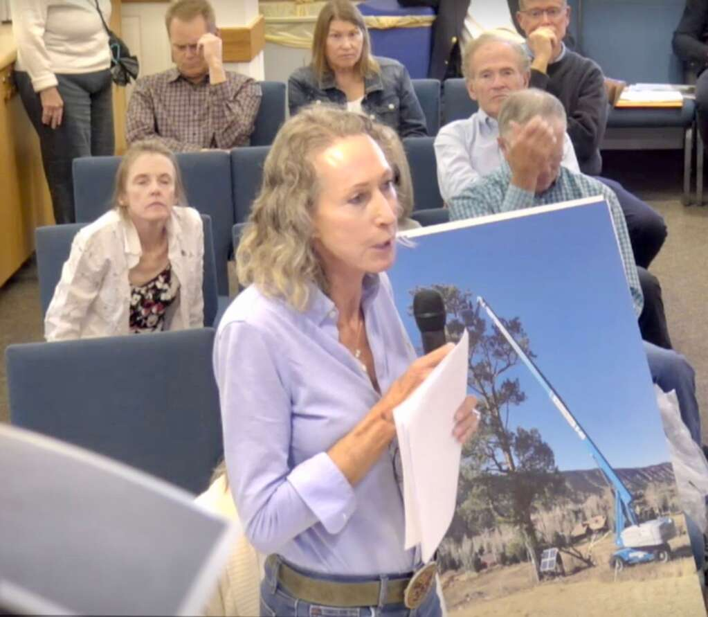 Aspen Glen resident Lisa McPherson uses a display at a Garfield County public hearing Monday, Sept. 20 to press her point that the use of a crane to install a camera in a bald eagle's nest in November 2016 drove out the mating pair. | Screen shot from the county's online video