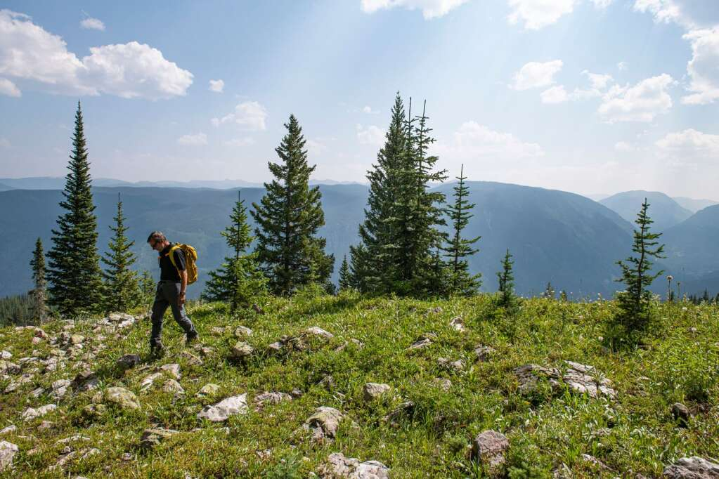 Rick Burkley walks along a rocky hill that curves down skier's left to the proposed Pandora Lift on Aspen Mountain on Thursday, August 12, 2021. (Kelsey Brunner/The Aspen Times)