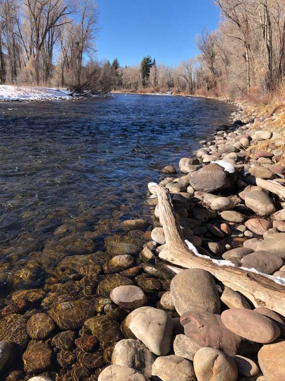 A trail along the Roaring Fork River near Crown Mountain Park is a popular route for dog walkers. | Scott Condon/The Aspen Times