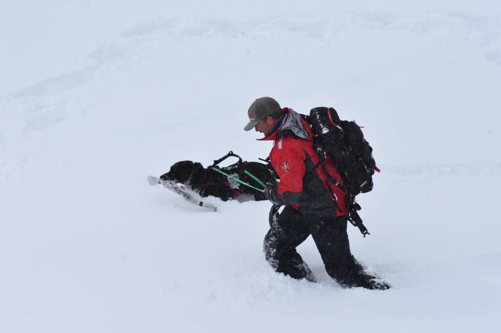 Pictured are rescue dog Keena and her handler, Doug Lesch, of the Summit County Rescue Group. | Photo by Sawyer D'Argonne / sdargonne@summitdaily.com